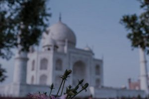 Executive Protection and Travel Risk Management in India