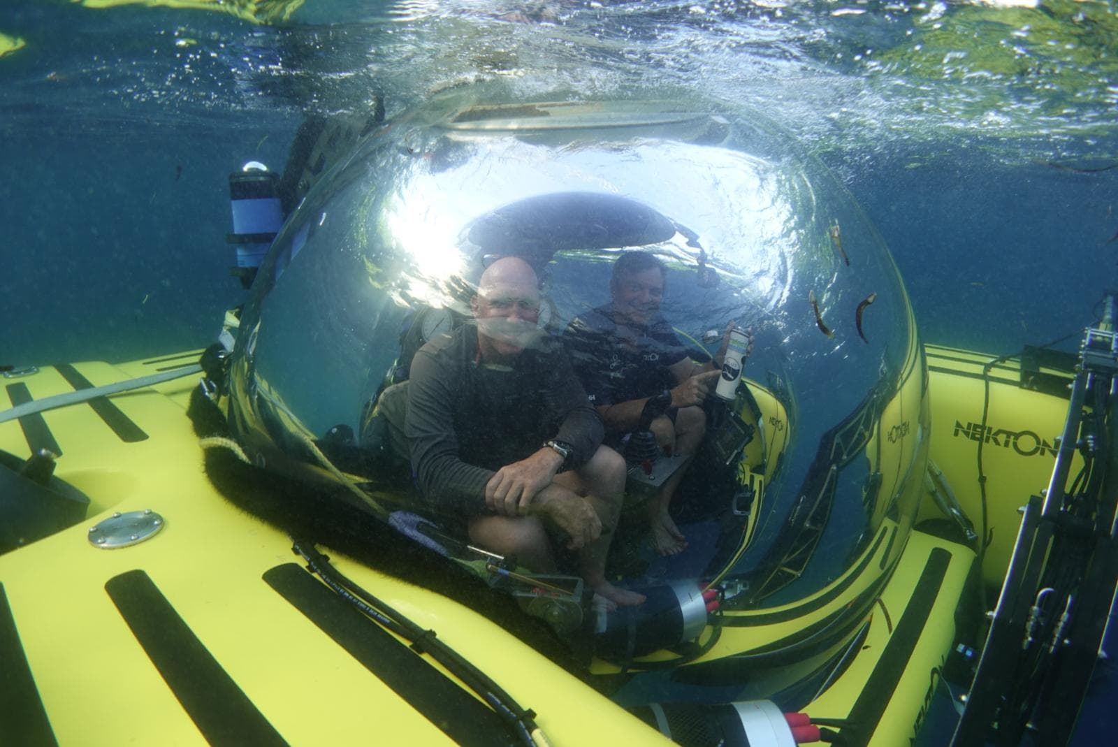 Nekton Maritime Mission [Science, Security and Submarines]